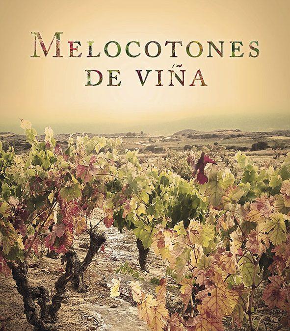 Desarrollo infantil y novela en La Rioja